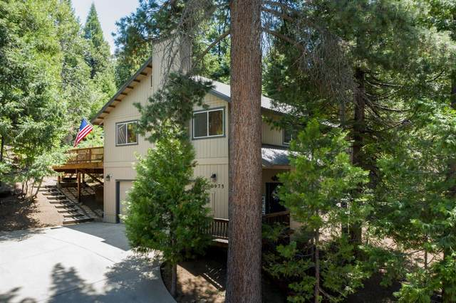 40975 Cold Springs Lane, Shaver Lake, CA 93664 (#560692) :: Raymer Realty Group