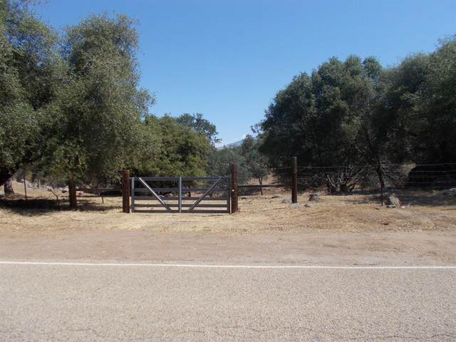 0 Lot 119 Bay Lane, Squaw Valley, CA 93675 (#560696) :: Raymer Realty Group