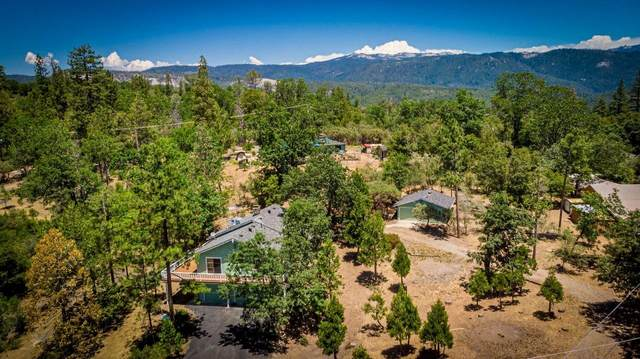 52577 Road 426, Oakhurst, CA 93644 (#560763) :: Raymer Realty Group
