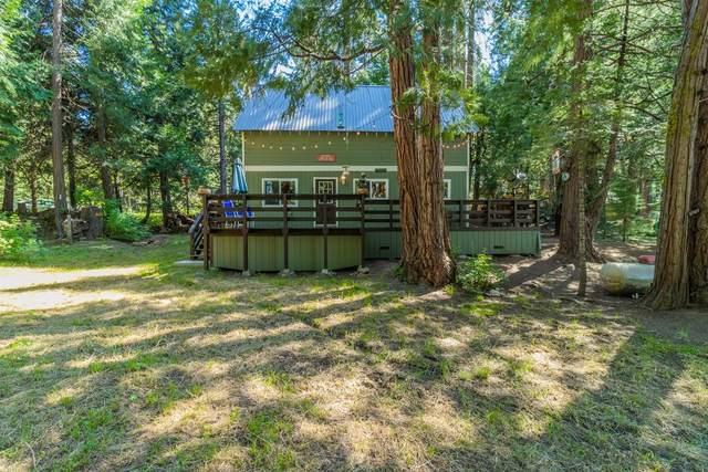 42307 Rock Ledge Road, Shaver Lake, CA 93664 (#560993) :: Raymer Realty Group