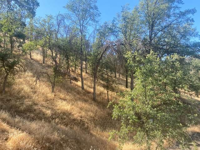 0 Peck Lane, Squaw Valley, CA 93675 (#561366) :: CENTURY 21 Jordan-Link & Co.