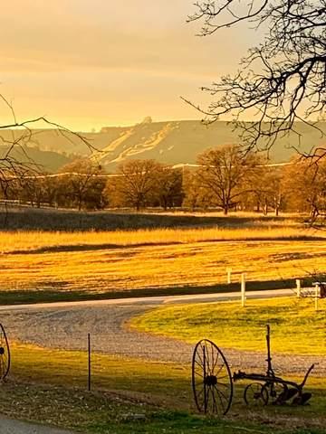 27762 Twin Ponds Rd. Road, Clovis, CA 93619 (#561531) :: CENTURY 21 Jordan-Link & Co.
