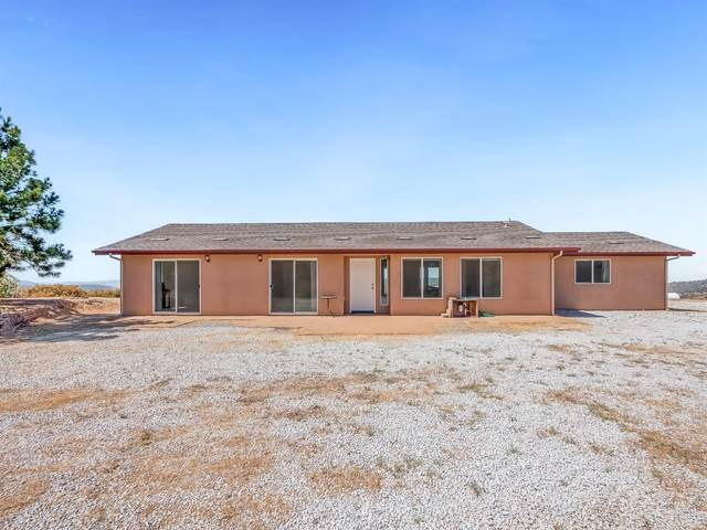 43310 Werney Road, Coarsegold, CA 93614 (#561715) :: Raymer Realty Group