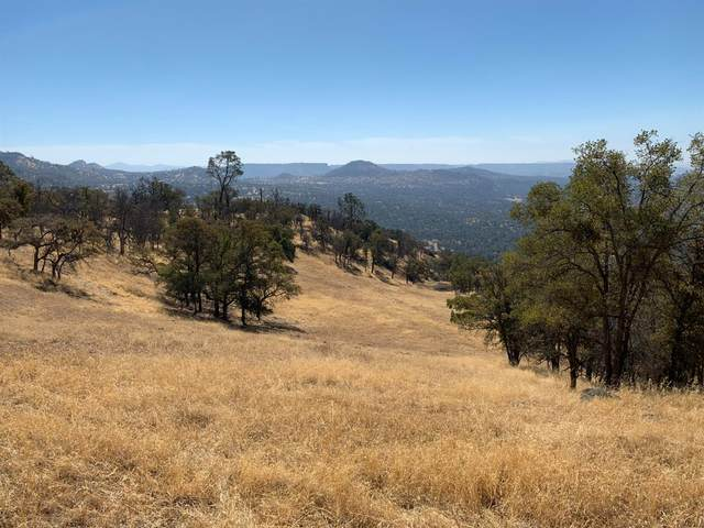 0 Address Not Published, Friant, CA 93626 (#562629) :: Raymer Realty Group