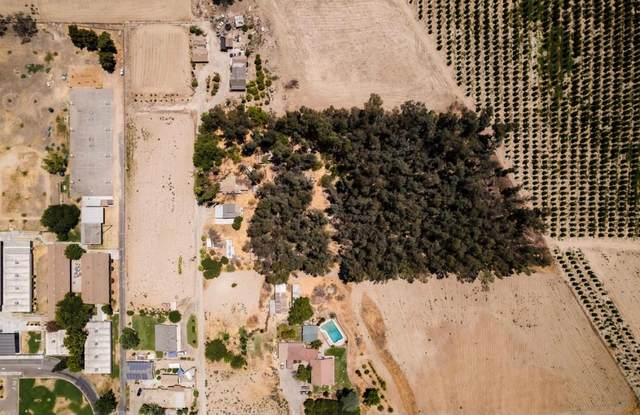 8734 S Lac Jac Avenue, Parlier, CA 93648 (#562822) :: Raymer Realty Group
