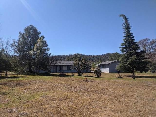 29322 Fallen Oak Drive, Tollhouse, CA 93667 (#562896) :: Raymer Realty Group