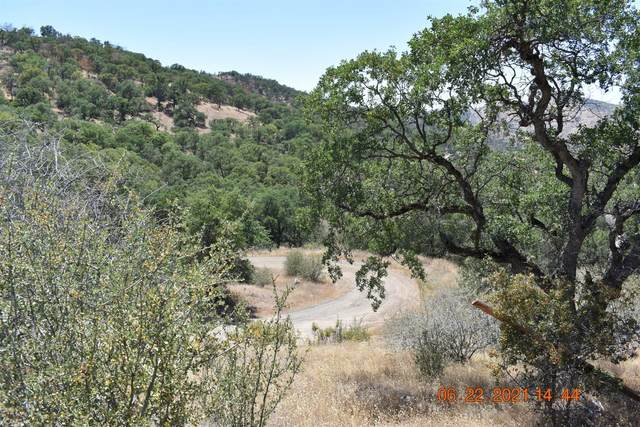 30038 Big Springs Road, Tollhouse, CA 93667 (#563041) :: Raymer Realty Group