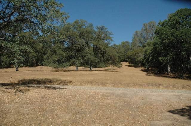 5280 Italian Creek Road, Mariposa, CA 95338 (#563536) :: Raymer Realty Group