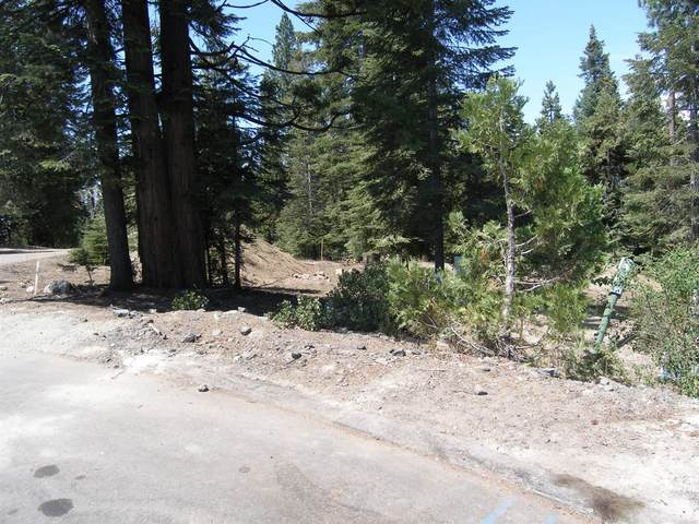 39851 Mountain Heather, Shaver Lake, CA 93664 (#563709) :: Raymer Realty Group