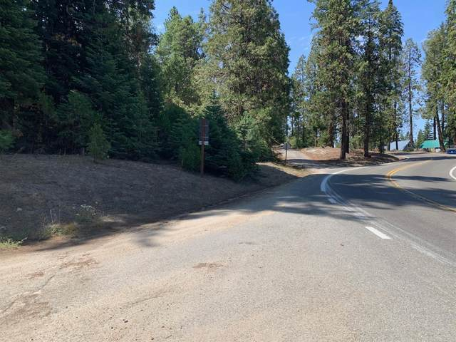 41261-41221 Tollhouse Road, Shaver Lake, CA 93664 (#563822) :: Raymer Realty Group