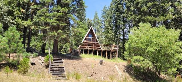 53700 Providence Creek Road, Shaver Lake, CA 93664 (#563838) :: Raymer Realty Group