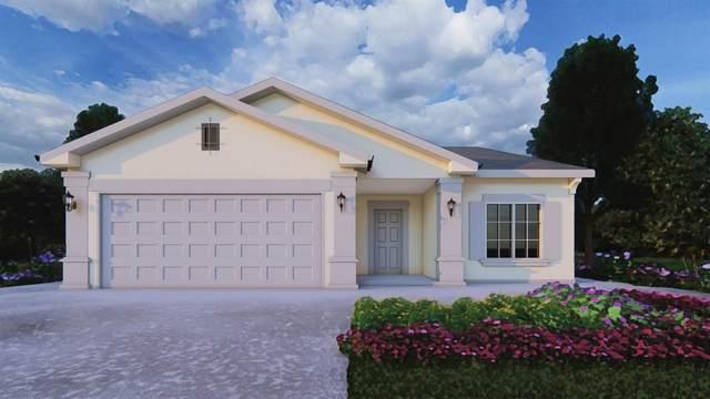 1213 E Ventura Street, Avenal, CA 93204 (#563869) :: Raymer Realty Group
