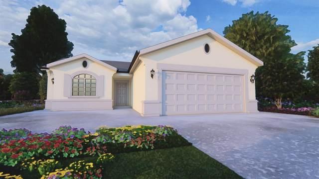 1209 E Ventura Street, Avenal, CA 93204 (#563870) :: Raymer Realty Group