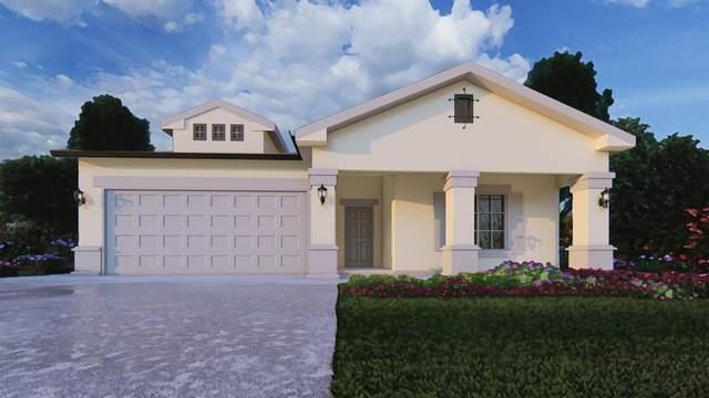 1205 E Ventura Street, Avenal, CA 93204 (#563871) :: Raymer Realty Group