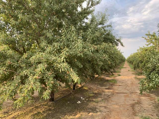 5682 Avenue 22 1/2, Chowchilla, CA 93610 (#563900) :: Raymer Realty Group