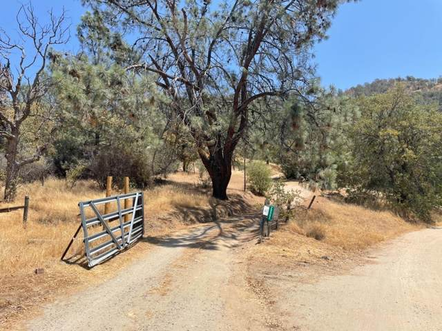 28565 Hidden Hollow Lane, Tollhouse, CA 93667 (#563957) :: Raymer Realty Group