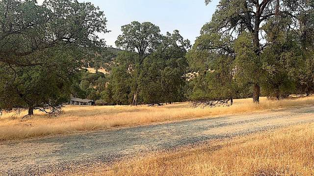 19 Pine Street, Coulterville, CA 95311 (#565120) :: Your Fresno Realty | RE/MAX Gold
