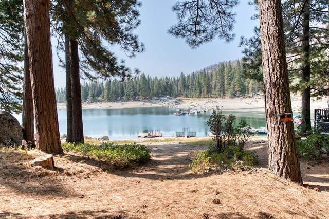 44278 Lakeview, Shaver Lake, CA 93664 (#567021) :: Raymer Realty Group