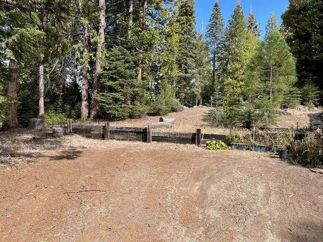 40865 Cold Springs Lane, Shaver Lake, CA 93664 (#567924) :: Your Fresno Realty | RE/MAX Gold