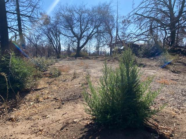 34527 Shaver Springs Road, Auberry, CA 93602 (#568038) :: Your Fresno Realty | RE/MAX Gold