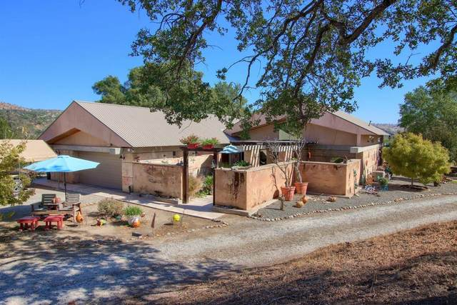 41810 Road 406, Coarsegold, CA 93614 (#568055) :: Raymer Realty Group