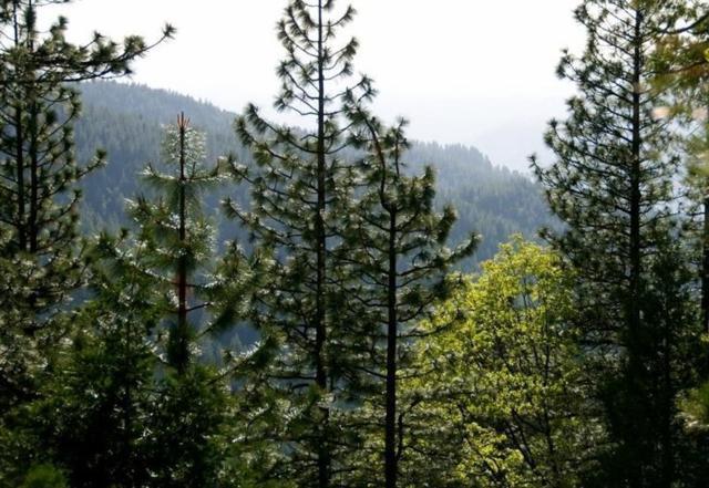 7486 Henness Ridge Road, Yosemite West, CA 95389 (#485382) :: FresYes Realty