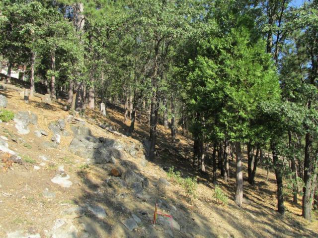 7484 Yosemite Park Way, Yosemite West, CA 95389 (#487332) :: FresYes Realty