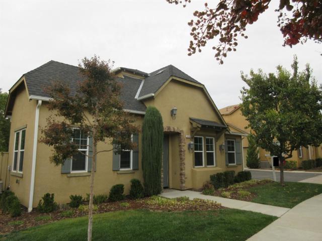 4182 Trenton Avenue, Clovis, CA 93619 (#493044) :: Raymer Realty Group