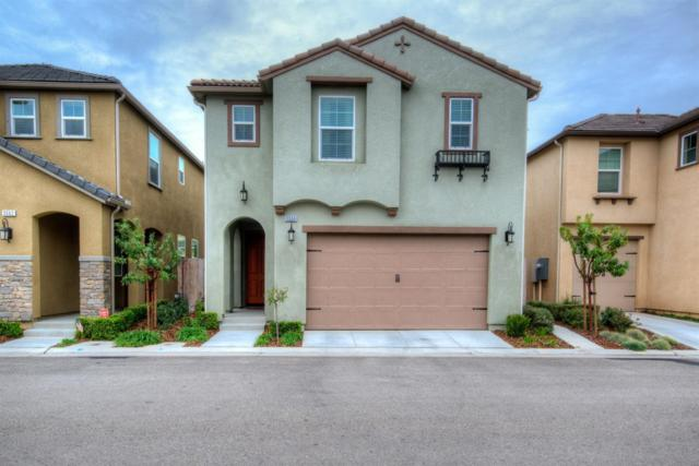 3556 Magnificent Way, Clovis, CA 93619 (#499402) :: FresYes Realty