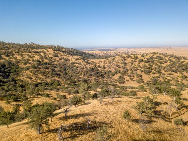 0 Road 210, Friant, CA 93626 (#504376) :: Raymer Realty Group
