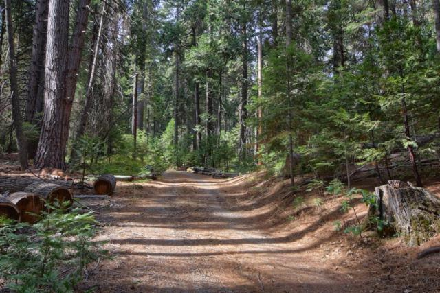 7607 Forest Drive, Fish Camp, CA 93623 (#509752) :: FresYes Realty