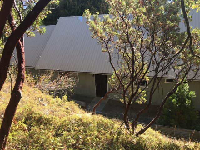 35869 Shriners Lane, Wishon, CA 93669 (#510427) :: Soledad Hernandez Group