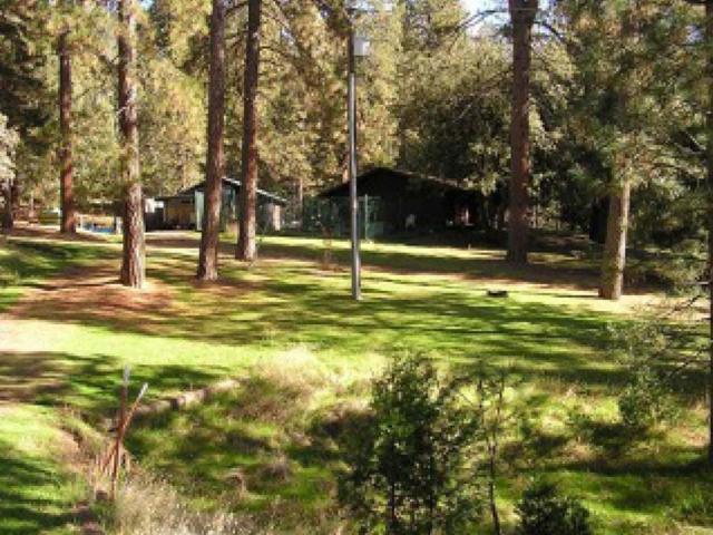 3158 E Westfall Road, Mariposa, CA 95338 (#513251) :: FresYes Realty