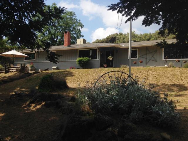 48910 Dunlap Road, Miramonte, CA 93641 (#516065) :: Soledad Hernandez Group