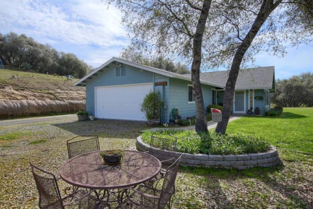 42733 Windy Gap Drive, Ahwahnee, CA 93601 (#520657) :: FresYes Realty