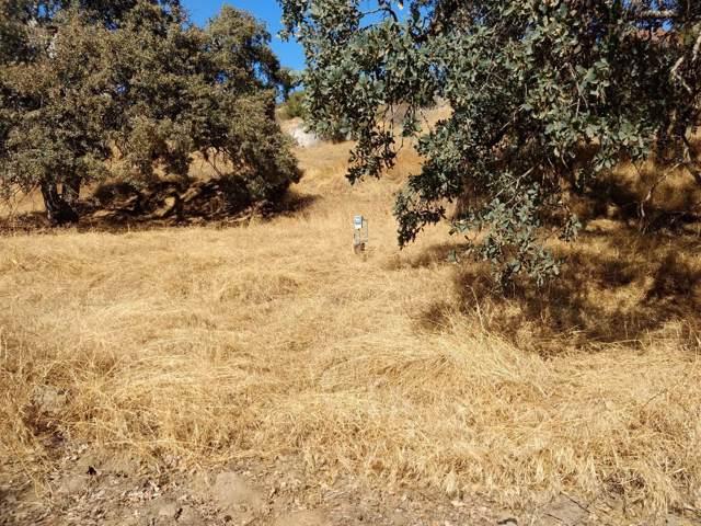 49656 Highoaks Lane, Squaw Valley, CA 93675 (#532329) :: FresYes Realty