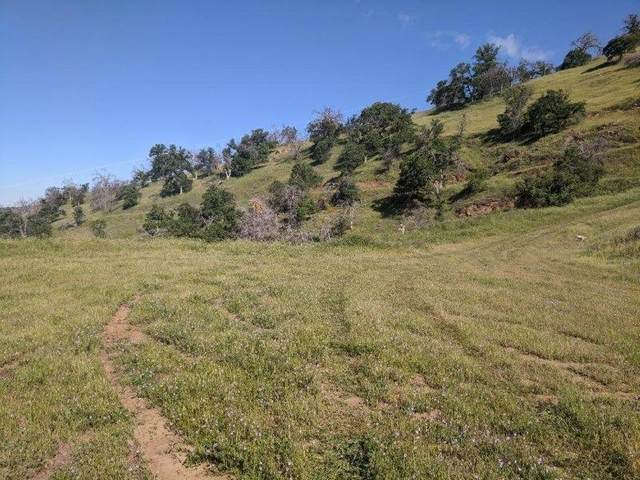 0 Hidden Hollow 160, Tollhouse, CA 93667 (#541012) :: Raymer Realty Group