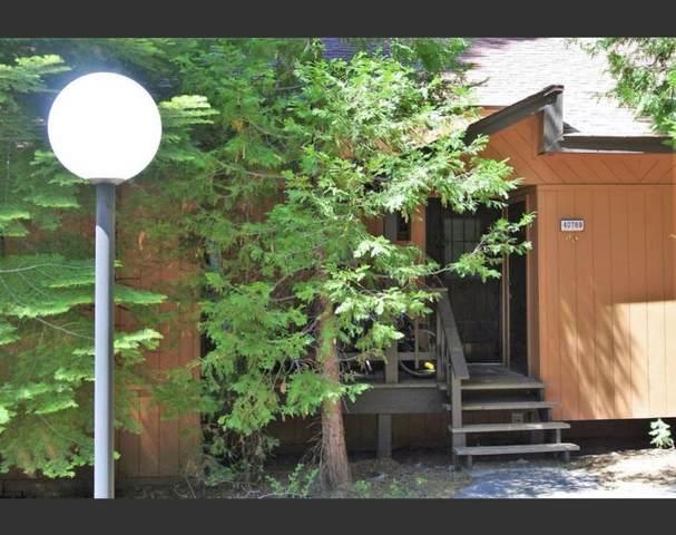 40769 Millrun, Shaver Lake, CA 93664 (#541835) :: Raymer Realty Group