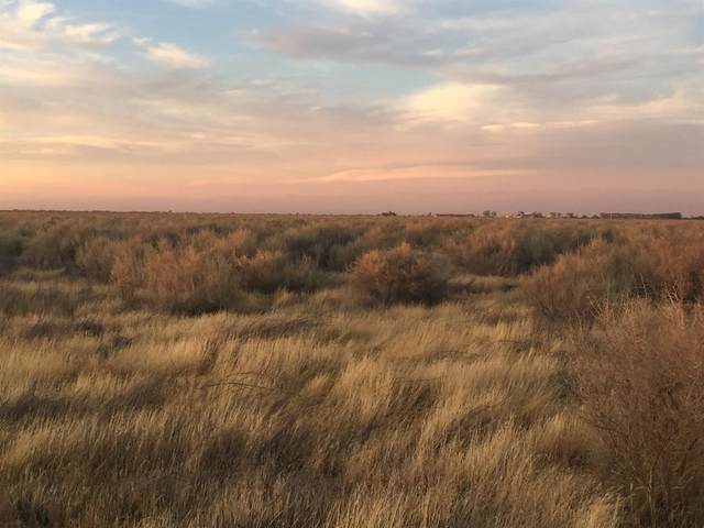 0 Address Not Published, Corcoran, CA 93201 (#543389) :: FresYes Realty