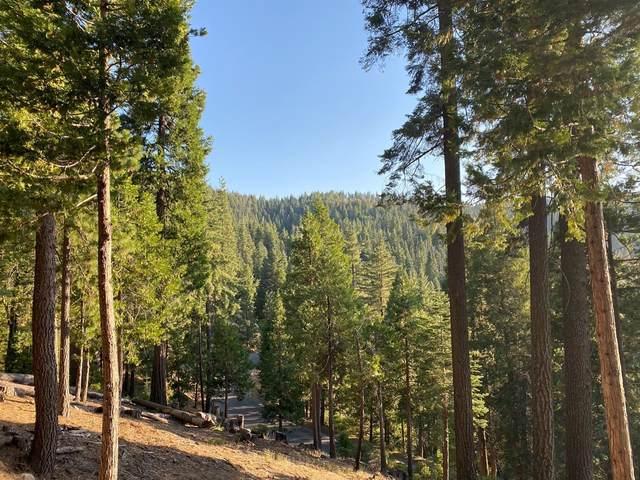 7463 Yosemite Park Way, Yosemite West, CA 95389 (#545231) :: Twiss Realty