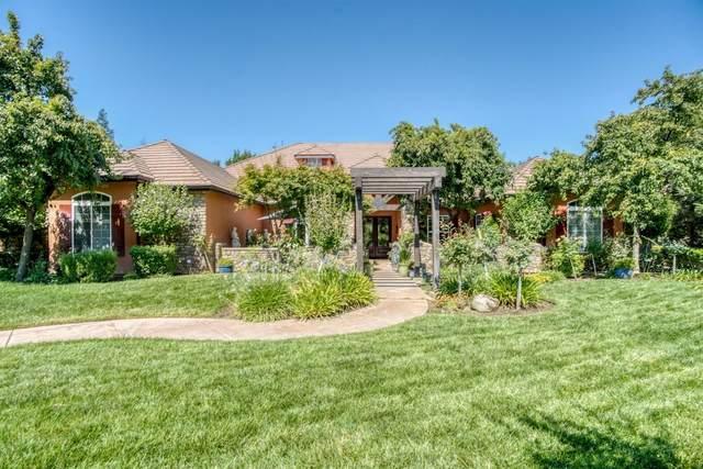 14482 Mallard Meadows Lane, Prather, CA 93651 (#545561) :: Raymer Realty Group