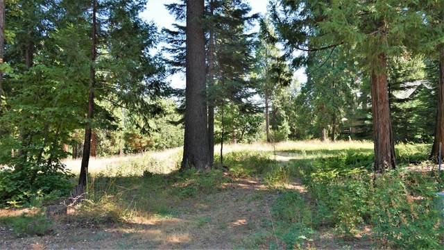 42704 Granite Circle Lane, Shaver Lake, CA 93664 (#549786) :: Raymer Realty Group
