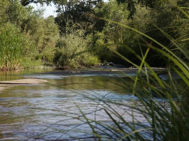 0 River Knolls Road, Coarsegold, CA 93614 (#555450) :: eXp Realty
