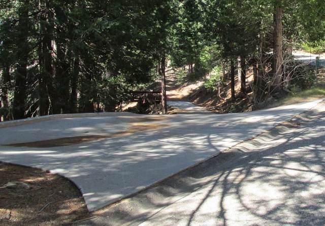 7245 Yosemite Park Way, Yosemite West, CA 95389 (#556914) :: Twiss Realty