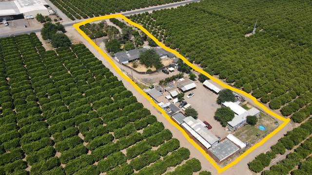42204 Road 120, Orosi, CA 93647 (#558853) :: Raymer Realty Group