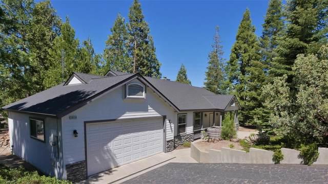 39585 Musick Falls Road, Shaver Lake, CA 93664 (#561029) :: Raymer Realty Group