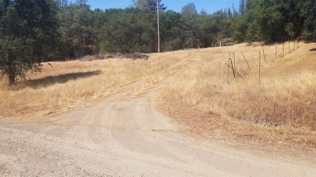 3899 La Rosa Road, Mariposa, CA 95338 (#563669) :: Raymer Realty Group