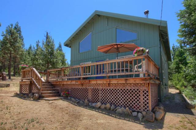 1218 Yosemite Way, Foresta, CA 95389 (#505391) :: Soledad Hernandez Group