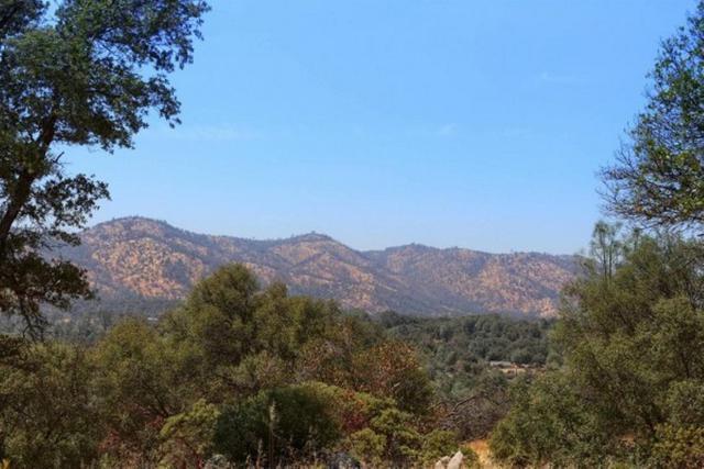 2374 Green Hills Road, Mariposa, CA 95338 (#509443) :: Soledad Hernandez Group