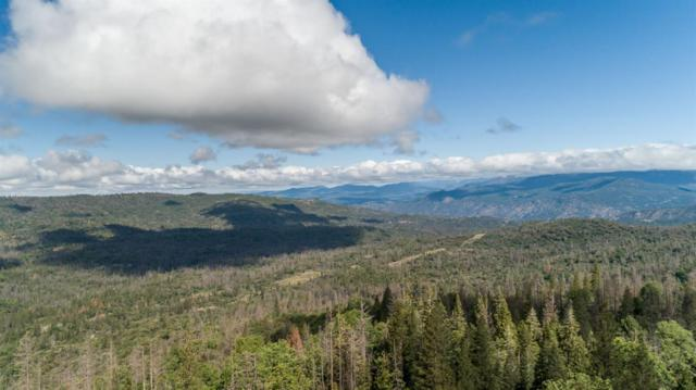 39489 Lower Routt Mill, Shaver Lake, CA 93664 (#523702) :: Raymer Realty Group